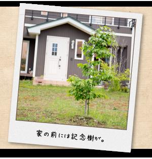 家の前には記念樹が。