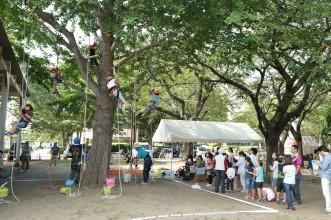 自分の力で!木登り体験会