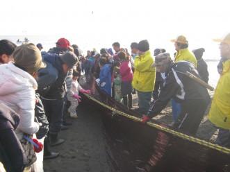 News&Topics『伝統漁法「地引網」をおいらせ町で体験!】