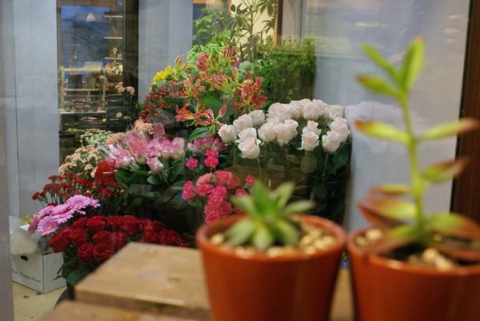 花園館(HANAZONOKAN)写真