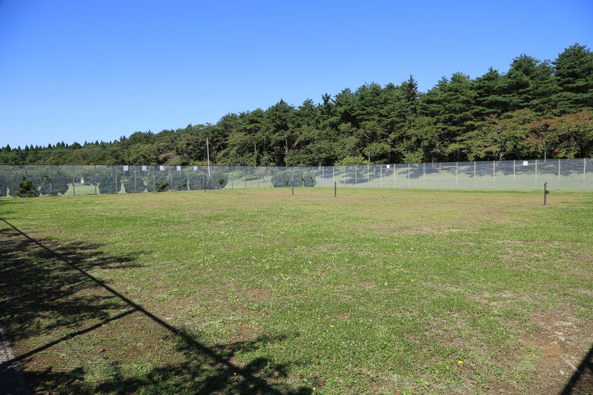 【三沢市民の森運動公園 ドッグラン】写真
