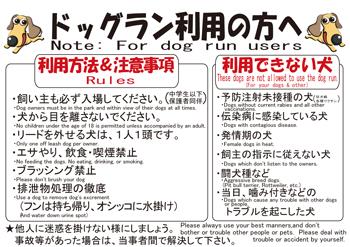 dog-koukuu11