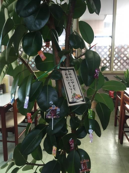 三沢市街パシャ写真『木になってて気になってた】