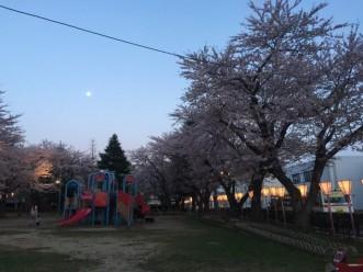 三沢市街パシャ写真『お月さまと花見】