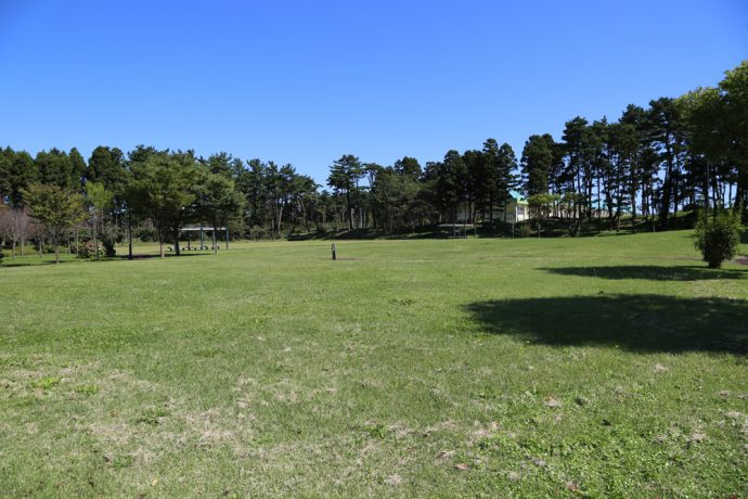 ふるさとはまなす公園(犬の入れる公園)写真