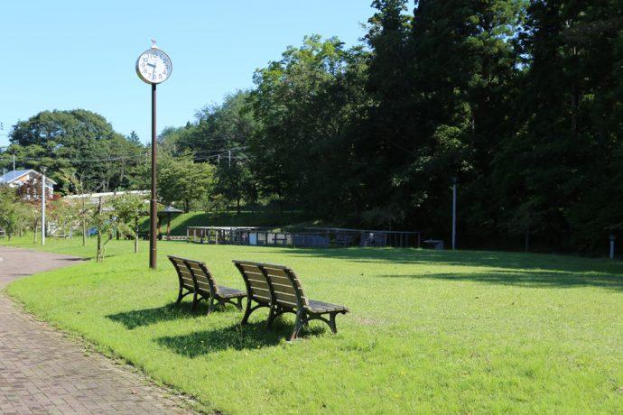 春日台せせらぎ公園(犬の入れる公園)写真