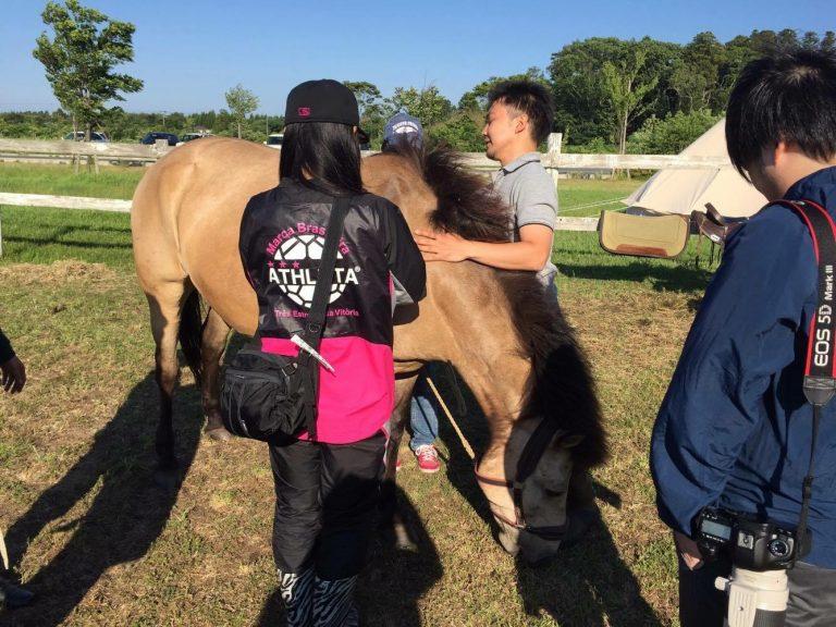 三沢市街パシャ写真『お馬さん】