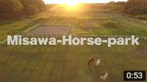 horse-movie