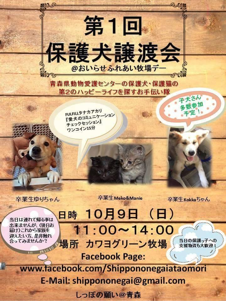 保護 犬 譲渡 会 埼玉 関連リンク(譲渡認定ボランティア団体など)