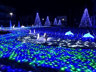 三沢市街パシャ写真『毎年恒例のイルミネーション☆】