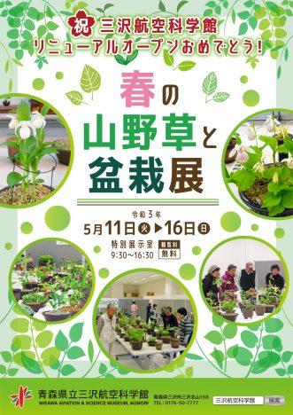 『青森県立三沢航空科学館特別展「春の山野草と盆栽展」】
